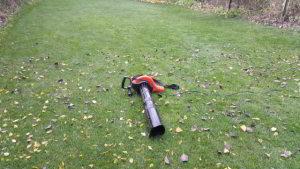 So sieht die optimale Herbstrasenpflege aus