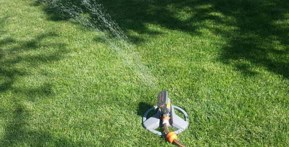 Rasendünger einwässern