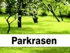 Landschaftsrasen - Parkrasen