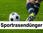Sportrasendünger
