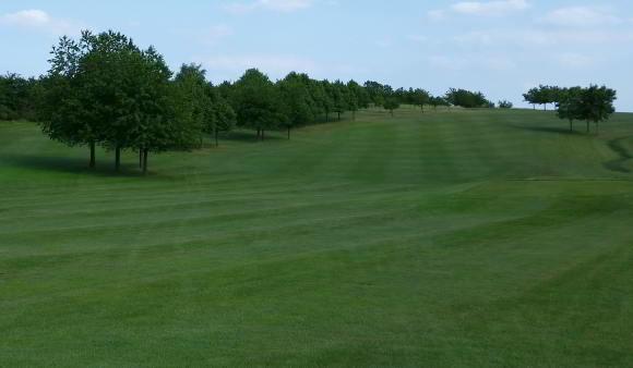 Faiwayrasenmischung für Golfanlagen