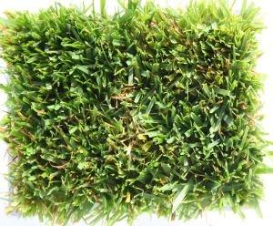 Super Over Seeding Regenerationsmischung Herbst und Fruehjahr
