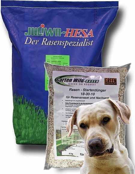 Hunderasen - belastbarer Rasen für Hunde