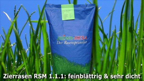 Zierrasen mit Lolium perenne RSM 1.1.1
