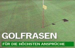 Golfrasen Approach Festuca